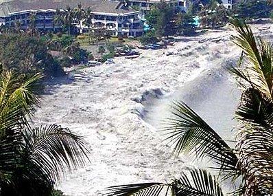 http://www.jobsletter.org.nz/images/tsunami.jpg