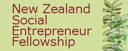New Zealand Social Entrepreneur Fellowship